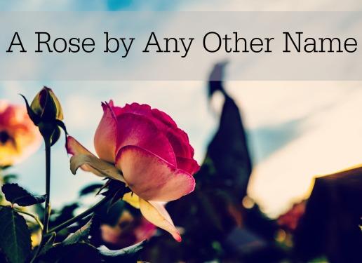 rose-title